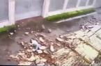 Bão số 9 - Molave: Cô gái trẻ bị bức tường dài 30m đổ sập, đè lên người gây chấn thương nặng