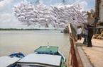 Giá gạo xuất khẩu tuần qua ở Ấn Độ, Việt Nam, Thái Lan đều giảm