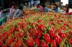 Xuất khẩu rau quả 9 tháng đầu năm 2020 đạt 2,5 tỷ USD