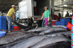 Ngư dân Khánh Hòa khai thác được hơn 82.100 tấn thủy sản