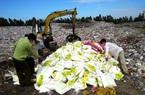 Đắk Nông: Phạt công ty sản xuất phân bón giả 115 triệu đồng