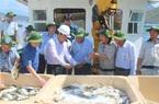 Xác định nuôi biển là nghề đa mục tiêu, đa lợi ích