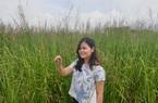 Ninh Bình: Bỏ việc lương cao về quê trồng loài cỏ lạ rễ mọc dài hàng mét, người đẹp Thu Hoài có thu nhập khủng