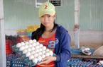 Tỉnh đầu tiên ở miền Tây có trứng vịt đạt tiêu chuẩn xuất khẩu sang Singapore là tỉnh nào?