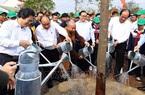 Thủ tướng Nguyễn Xuân Phúc đề xuất trồng thêm 1 tỷ cây xanh trong 5 năm tới