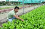 Quảng Nam: Hơn 23,5 tỷ đồng hỗ trợ xây dựng hệ sinh thái khởi nghiệp