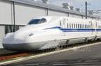 Đấu thầu quốc tế lựa chọn tư vấn thẩm tra dự án đường sắt tốc độ cao Bắc - Nam