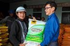 Người nông dân Quảng Bình tràn đầy niềm tin vào vụ mùa mới sau lũ