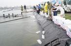 Việt – Úc đồng hành cùng Tổng Cục Thủy Sản tặng tôm giống cho bà con miền Trung chịu ảnh hưởng do bão, lũ