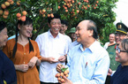 """Thủ tướng Nguyễn Xuân Phúc: Nông nghiệp luôn là """"mỏ vàng"""""""