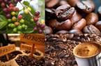 Cà phê rang xay, hòa tan sẽ thực hiện giấc mơ 6 tỷ USD vào năm 2030 của ngành?