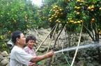 An Giang: Tranh thủ các nguồn lực để hỗ trợ nông dân vươn lên khá giả