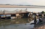 Phú Thọ: Sông Đà lại đột ngột cạn nước, nông dân hối hả cứu cá lồng