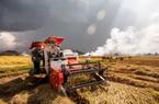Cho vay Hợp vốn góp phần thúc đẩy phát triển kinh tế bền vững