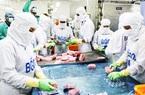 Vì sao 1 tỉnh có biển như Khánh Hòa mà doanh nghiệp vẫn phải mua cá ngừ đại dương từ nước ngoài về chế biến?