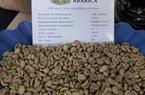 """Vì sao cà phê xuất khẩu chưa """"hưởng lợi"""" nhiều từ EVFTA?"""