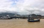 Vì sao 2 tàu cá tỉnh Bình Định bị xóa số đăng ký?