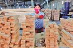 Khó trăm bề do Covid-19, xuất khẩu gỗ vẫn sẽ cán đích 13 tỷ USD trong năm 2020