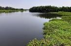 Quảng Nam tìm nhà thầu lập hồ sơ thiết kế cho đô thị ven biển và sông Cổ Cò