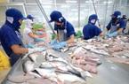 """Xuất khẩu cá tra sang Trung Quốc bị """"tắc"""", VASEP kêu gọi tránh nôn nóng chào giá thấp"""