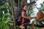 """Quảng Nam: Lên vùng đất này xem nông dân """"nấu rượu"""" trên cây, đàn bà con gái cũng leo lên nấu tốt"""
