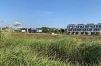 """Những dự án đấu giá đất bị """"làm xiếc"""" ở Phú Thọ: Có đủ dấu hiệu để khởi tố?"""