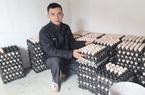 Chỉ nuôi gà ấp trứng, anh nông dân Thái Nguyên thu lãi 300 – 500 triệu đồng/năm