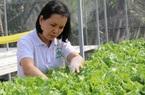 Thực hiện Kết luận số 61 của Ban Bí thư: TP Hồ Chí Minh thêm nhiều nông dân trở thành doanh nhân