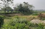 Công an thông tin vụ phát hiện đôi nam nữ tử vong trong lều giữa cánh đồng