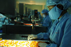 SCIC thoái 29% vốn tại dự án sản xuất thuốc ung thư  Benovas nghìn tỷ