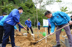 Vinamilk hoàn thành mục tiêu trồng hơn 1,1 triệu cây xanh cho Việt Nam năm 2020