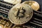 1 câu nói của Elon Musk lại khiến giá bitcoin tăng dựng đứng