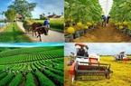 Phát triển nông nghiệp công nghệ cao: Hàng tỷ đồng một cái máy cày nhưng không thể thế chấp ngân hàng