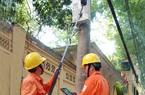 Chính phủ đồng ý tiếp tục giảm giá điện 3 tháng do dịch Covid-19