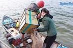 """Tỉnh Quảng Ngãi có 1 """"ngư trường"""" ở trên...núi, dân đánh bắt được vô số cá ngon, lên bờ là thương lái """"khuân"""" sạch"""