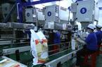 Năm 2021, triển vọng xuất khẩu gạo được dự báo như thế nào?