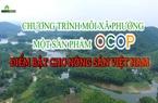 Chương trình mỗi xã, phường một sản phẩm OCOP: Điểm tựa cho nông sản Việt