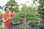 Long An: Nghề makeup cho cây kiểng bonsai, vừa làm vừa chơi cũng ra tiền, đến đàn bà con gái còn ham