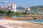 Nông nghiệp Việt Nam vượt đại dịch Covid-19: Kim ngạch xuất khẩu nông lâm thủy sản tăng trưởng