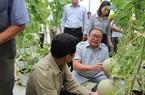4 huyện này của tỉnh Hà Tĩnh thực hiện dự án Nông nghiệp thông minh