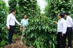 """Kon Tum: Huyện Sa Thầy chờ đổi thay nhờ dự án """"khủng"""" hơn 2.544 tỷ"""