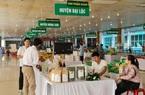 Quảng Nam: Thu gần 70 tỷ đồng/năm từ sản phẩm OCOP, lợi nhuận ngày càng tăng