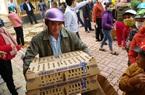 Gia Lai: Hộ nghèo KBang phấn khởi được Tập đoàn Mavin tặng 20.000 con giống gà, vịt