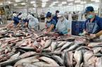Vì sao Hiệp hội chế biến và xuất khẩu thủy sản VN khuyến cáo tránh nôn nóng bán cá tra giá thấp sang Trung Quốc?