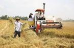 Bài 2: Bảo hiểm nông nghiệp vì sao chưa phát huy hiệu quả?
