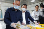 Thứ trưởng Bộ NNPTNT: Yêu cầu Hà Nội cung ứng đủ thực phẩm tết nhưng phải an toàn