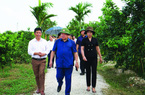 Mô hình Chi, tổ hội nông dân nghề nghiệp: Liên kết nông dân, tạo vùng sản xuất hàng hóa