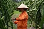 """Bài 3: Để bảo hiểm trở thành """"người bạn"""" cho nông dân"""