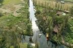 Chinampas - Biểu tượng của nền nông nghiệp Mexico đã được bảo tồn như thế nào?