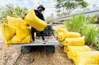 Những ngành nào có công lớn mang về 37,4 tỷ USD cho nông nghiệp 2020?